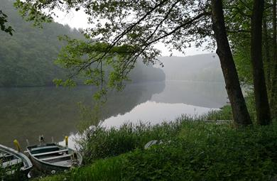 Lac de la Haute-Sûre: baignade interdite